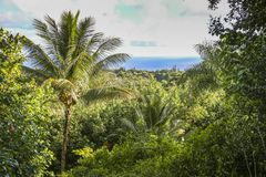 View over rain forest and sea landscape on Maui, Hawaii. View over jungle and sea landscape on Maui on Hawaii Royalty Free Stock Images