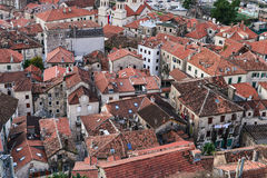 The view over red tiles roofs of the old center of Kotor, Monten Royalty Free Stock Photography