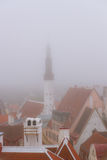 View over the roofs of Tallinn from the lookout Royalty Free Stock Images
