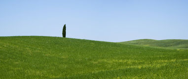 View over rural Tuscany, Italy Stock Image