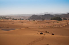 View over the Sahara Desert with camels waiting for tourists Royalty Free Stock Photo