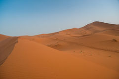 View over the sand dunes of the Sahara desert in Morocco Royalty Free Stock Images