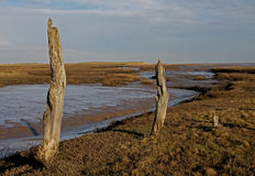 A view over Thornham Marsh, North Norfolk. stock photography