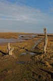 A view over Thornham Marsh, North Norfolk. Stock Image