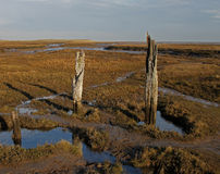 A view over Thornham Marsh, North Norfolk. Royalty Free Stock Image
