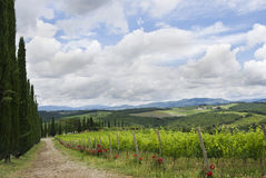 View Over Tuscany Stock Images