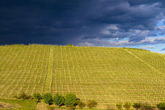 View over the vineyards and Langa hills during a thunderstorm. View of vineyards and Langa hills during a thunderstorm, suggestive contrast between dark skies royalty free stock photos