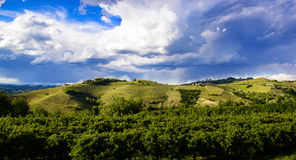 View over the vineyards and Langa hills during a thunderstorm. View of vineyards and Langa hills during a thunderstorm, suggestive contrast between dark skies royalty free stock images