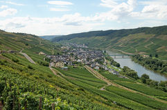 View over vineyards at Moselle river Rhineland-Palatinate  Stock Photos