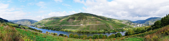 View over vineyards at Moselle river Rhineland-Palatinate  Royalty Free Stock Photography