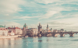 The view over the Vltava river, Charles bridge and white swans f Royalty Free Stock Image