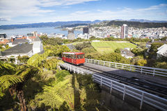 View over  Wellington Royalty Free Stock Photo