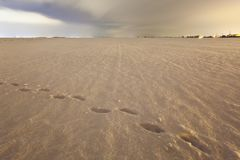 Footprints On Snow Covered Field At Night Royalty Free Stock Photography