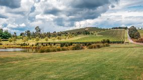 View over the Yarra Valley winery, Australia stock image