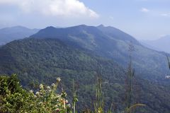 Overlapping lush green ponmudi hills Royalty Free Stock Photography