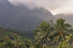 View overlooking Hanalei on Kauai, Hawaii.  Stock Photos