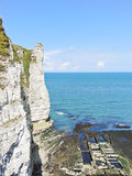 View of oyster farm and cliff on english channel Royalty Free Stock Images