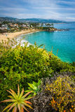 View of the Pacific Coast from Crescent Bay Point Park, in Lagun Royalty Free Stock Photos