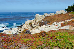 View on Pacific cost. In Monterey area, California Stock Images