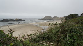 View of the Pacific from highway 101, on the Oregon coast. Stock Photography