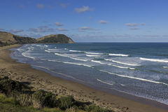 View on Pacific Ocean in New Zealand. Coast in New Zealand on a beautiful day stock images