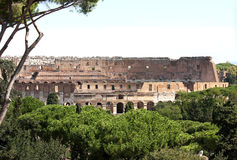 View from the Palatine Hill at the Colosseum, Rome, Lazio Royalty Free Stock Photography