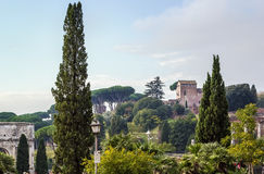 View of Palatine, Rome Stock Image
