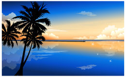 The view of Palm Royalty Free Stock Photos