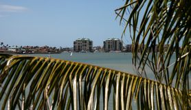 View through palm tree of Marco Island, Florida. From Collier Boulevard 951 with the bay ocean view royalty free stock image