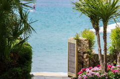 The view through the palms and beautiful red flowers of the blue sea royalty free stock photos