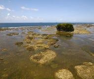 View of Panama coastline Royalty Free Stock Photo