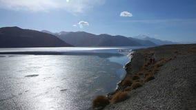 View of Pangong Lake in Ladakh, India stock video