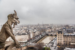 Paris in cloudy day from the top of Notre Dame Cathedral Royalty Free Stock Image