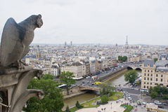 View of Paris. From Notre-Dame Cathedral Royalty Free Stock Photos
