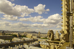 View of Paris from a tower of Notre Dame royalty free stock image