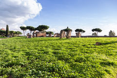 View of the park of Acquedotti in Rome. (Italy stock image