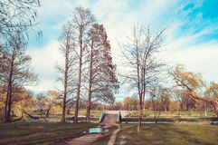 View in a park with bridge and trees near a lake Royalty Free Stock Image