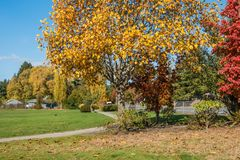 City Park In Autumn 4. A view of a park in Burien, Washington in Autumn stock images