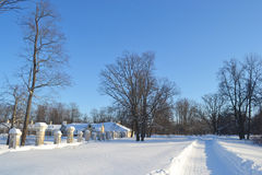 View of park in Oranienbaum Royalty Free Stock Photo