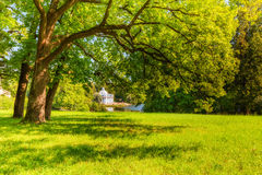 View of park in Pushkin in summer day Stock Photo
