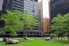 View of park between skyscraper buildings in Financial District Toronto Stock Photos
