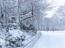 View of a park in winter Royalty Free Stock Image