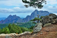 Corsica-outlook from pass Col de Bavella. A view from pass Col de Bavella on the island of Corsica in France stock images