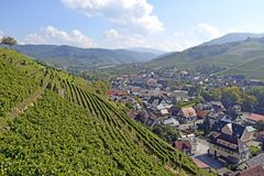Durbach vineyards. View past the vineyards towards the town of Durbach, Ortenau region in Baden Germany Royalty Free Stock Photo