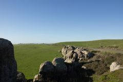 A view of pasture land from Elephant Rocks above Dillon Beach California. Green fields and blue sky royalty free stock photo