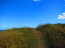 Path in a meadow over the hill Royalty Free Stock Photos