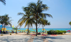 View of Patong beach with palm trees in Phuket, Thailand Stock Image