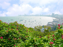 View of Pattaya, Thailand Royalty Free Stock Photo