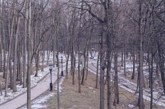 View of paved pathes in Tsaritsyno museum -reserve. With spring forest surrounding it stock photos