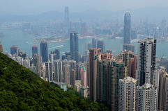 View from the Peak Stock Photography